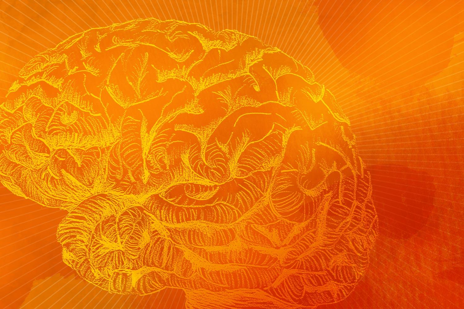 Brain Discovery Could Block Aging's Terrible Toll On The Mind