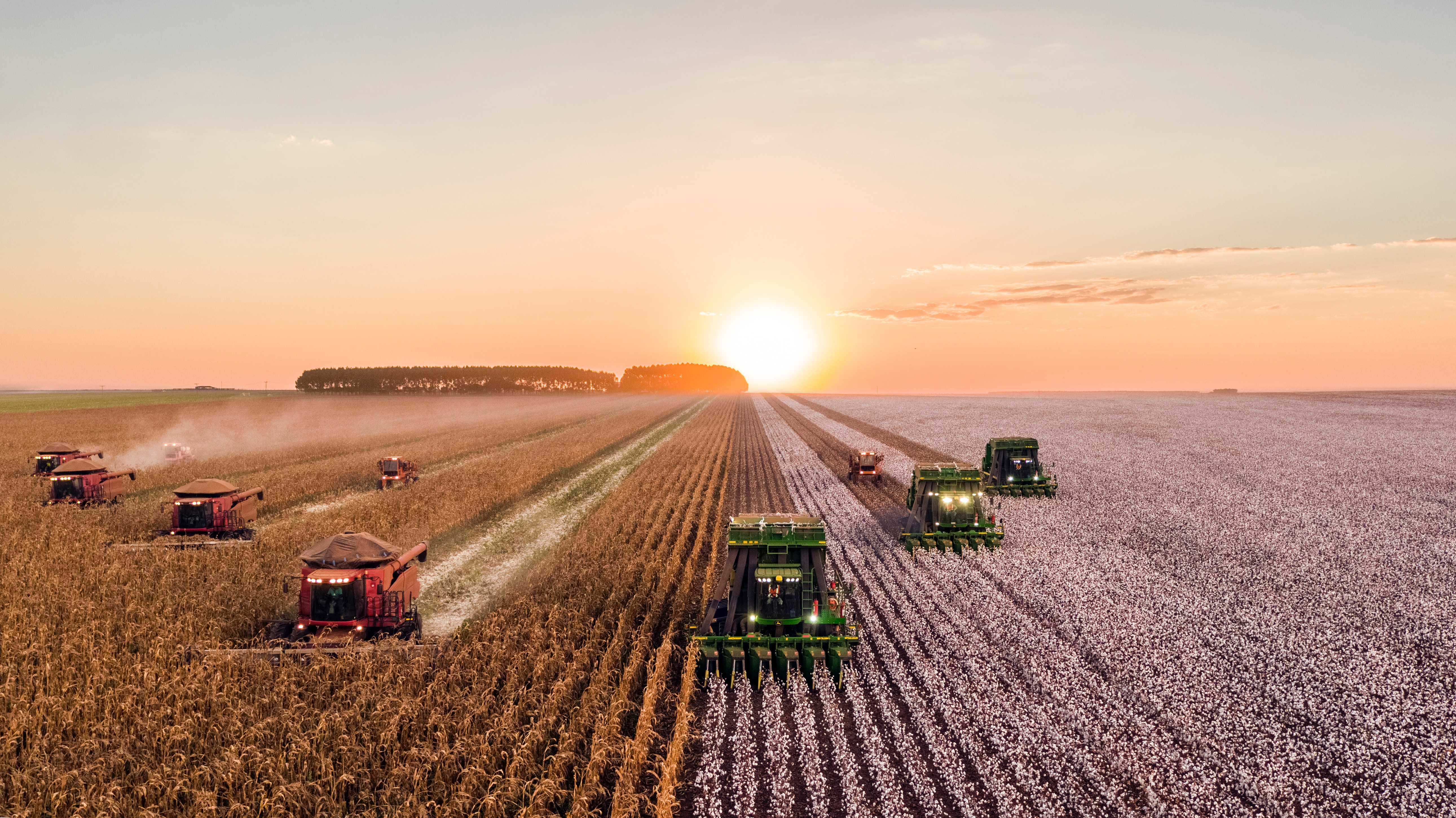 News Update on Farming Systems Research: Aug – 2019