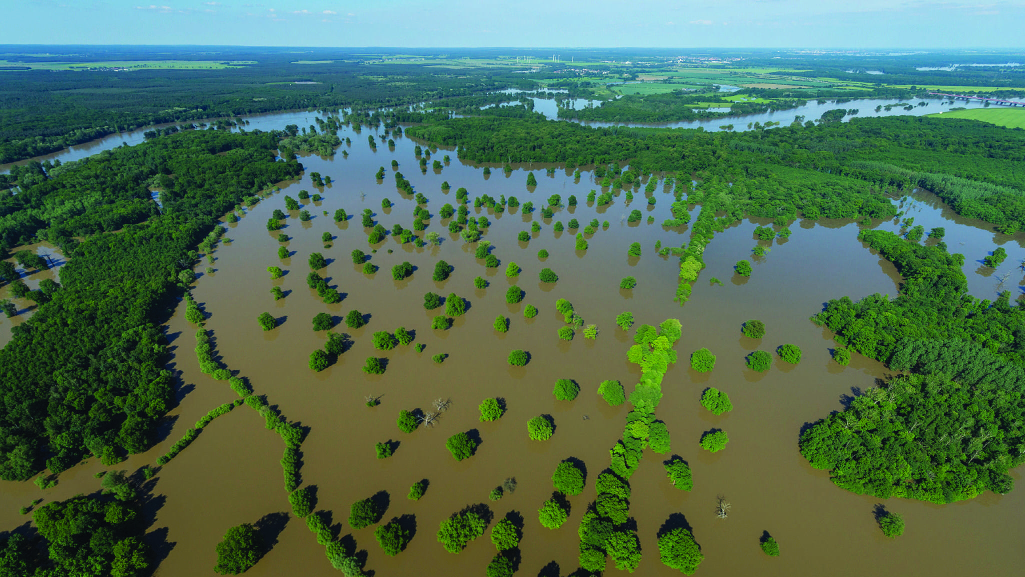 Latest Research on Floodplain Research: Sep – 2019