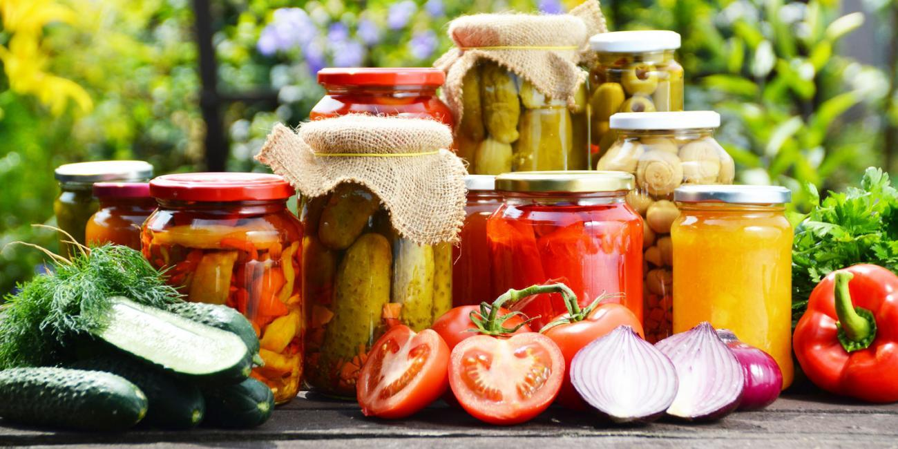 Latest Research on Fermented Foods: Nov – 2019