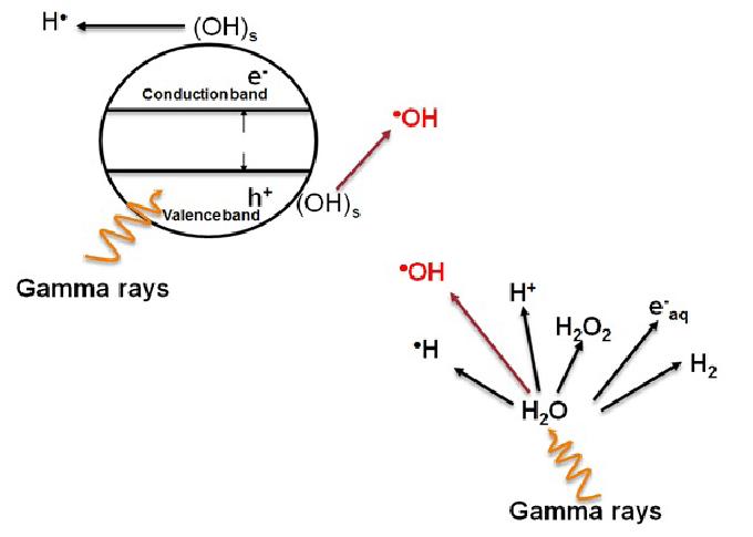 Latest Research on Gamma Radiation: Dec – 2019