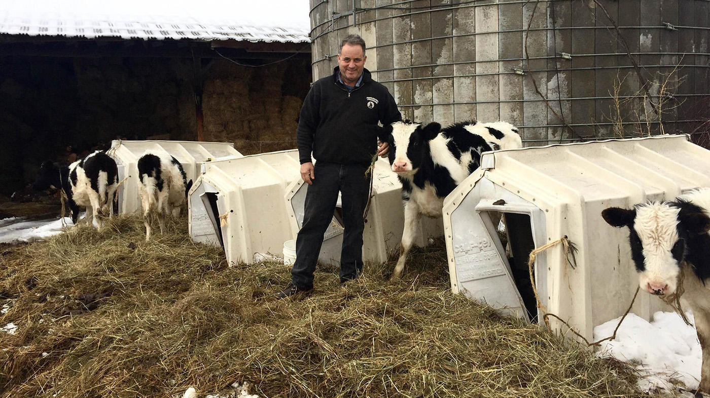 News Update on Dairy Farms Research: Feb – 2020